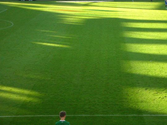 Rasen, Dreisam-Stadion, Freiburg