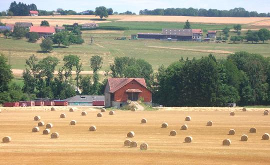 Bäuerliche Landschaft in der Nähe des Genfer Sees