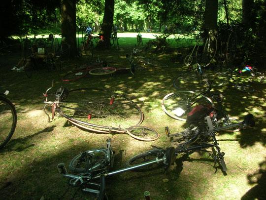 Fahrradparkplatz im Wald. Alte Räder haben keine Ständer