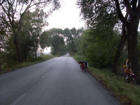 Mein Rad auf einer der schnurgeraden Straßen vor Ferrara; daneben hat es einen am Baum zerlegt, einen Autofahrer.