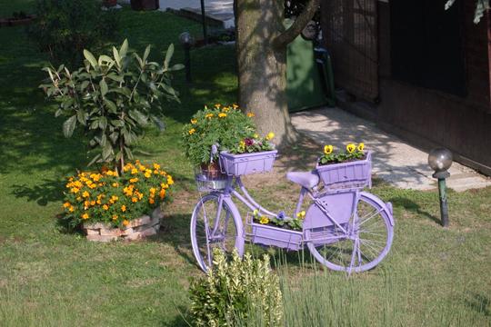 Fahrrad in Garten