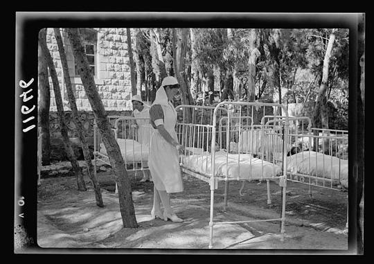 Kinderbettchen im Pinienwald von Safed, Galiläa (einst ein berühmter Ort von Kabbala-Gelehrten). Matson Photo Service, 1940, Dank an Library of Congress, Wash. D. C.