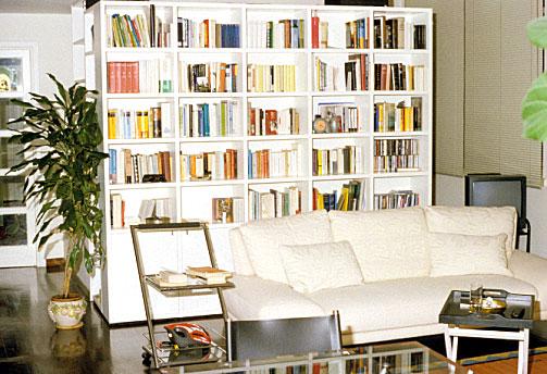 Die dünn bestückte Bücherwand